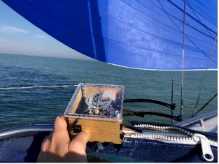 Sensors on a Cruise