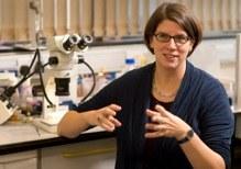 Dr Katja  Röper